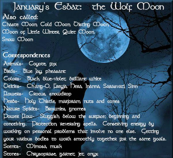 Full Wolf Moon | BlueStarSirius's Blog